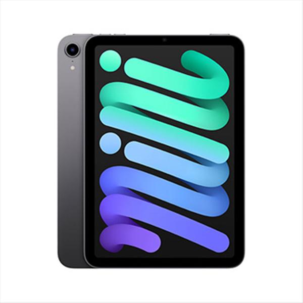 Apple iPad mini (2021) Wi-Fi 256GB, space gray