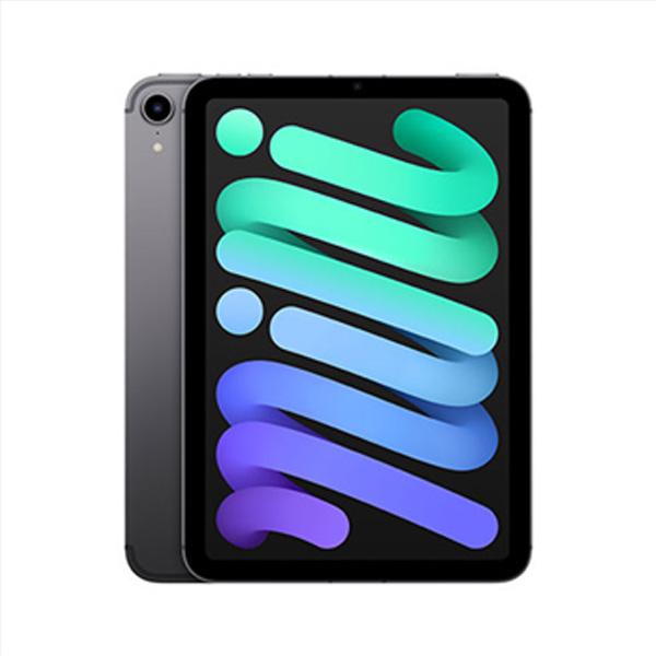 Apple iPad mini (2021) Wi-Fi + Cellular 64GB, space gray