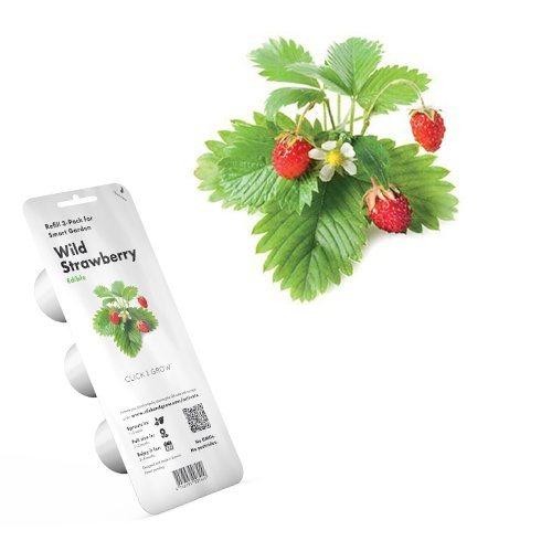 Smart Garden Lesné jahody