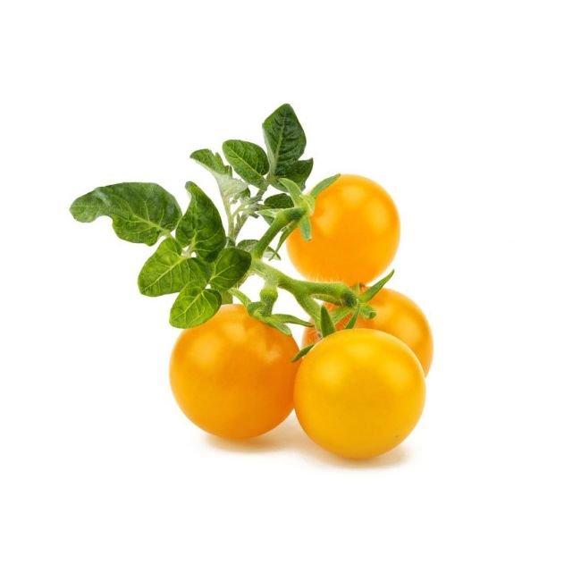 Smart Garden Žltá mini rajčina